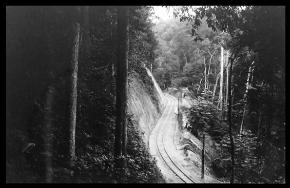 Mayumbe chemin de fer km 95,2 - prise du sentier du terre 1930
