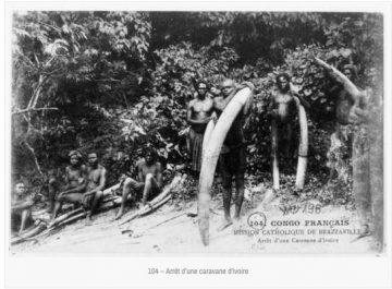 caravane d'ivoire:http-:dmcarc.com:114-cartes-postales-du-congo-offertes-a-la-bnf-par-la-mission-catholique-de-brazzaville-en-1907-bon:104